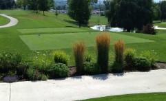 Experience the Missoula Country Club Golf Course